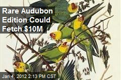 Rare Audubon Edition Could Fetch $10M