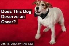 Does This Dog Deserve an Oscar?