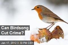 Can Birdsong Cut Crime?