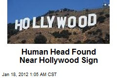 Human Head Found Near Hollywood Sign