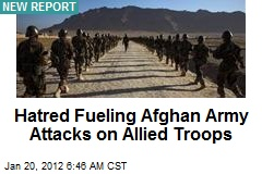 Hatred Fueling Afghan Army Attacks on Allied Troops