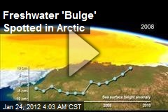 Fresh Water 'Bulge' Spotted in Arctic