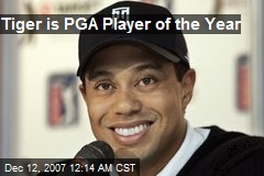 Tiger is PGA Player of the Year