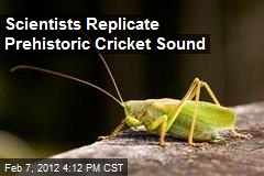 Scientists Replicate Prehistoric Cricket Sound