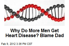 Why Do More Men Get Heart Disease? Blame Dad