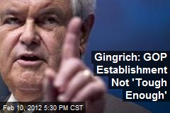 Gingrich: GOP Establishment Not 'Tough Enough' to Win