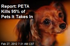 Report: PETA Kills 95% of Pets It Takes In