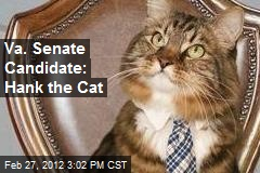 Va. Senate Candidate: Hank the Cat