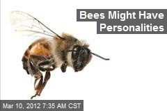 Bees Might Have Personalities