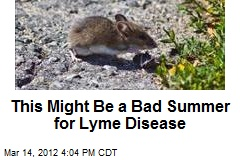 This Might Be a Bad Summer for Lyme Disease