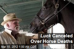 Luck Canceled Over Horse Deaths