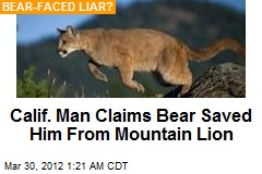 Calif. Man Claims Bear Saved Him From Mountain Lion