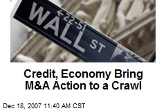 Credit, Economy Bring M&A Action to a Crawl