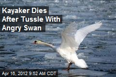 Kayaker Dies After Tussle With Angry Swan