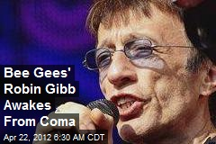 Bee Gees' Robin Gibb Awakes From Coma