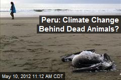 Peru: Climate Change Behind Dead Animals?