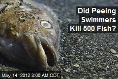 Did Peeing Swimmers Kill 500 Fish?