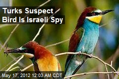 Turks Suspect Bird Is Israeli Spy