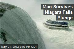 Man Survives Niagara Falls Plunge