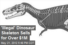 'Illegal' Dinosaur Skeleton Sells for Over $1M