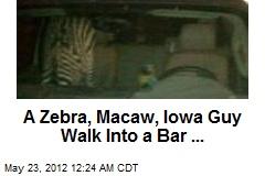 A Zebra and Macaw Walk Into a Bar ...