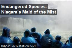 Endangered Species: Niagara's Maid of the Mist