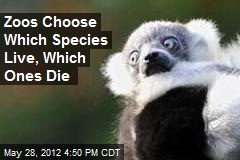 Zoos Choose Which Species Live, Which Ones Die