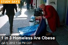 1 in 3 Homeless Are Obese