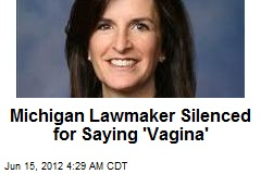 Michigan Lawmaker Silenced for Saying 'Vagina'