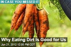 Why Eating Dirt Is Good for Us