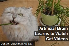 Artificial Brain Learns to Watch Cat Videos
