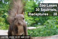 Zoo Loses 30 Squirrels, Recaptures ... 38