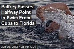 Palfrey Passes Halfway Point in Swim From Cuba to Florida