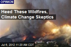 Heed These Wildfires, Climate Change Skeptics