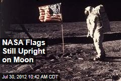 NASA Flags Still Upright on Moon