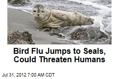 Bird Flu Jumps to Seals, Could Threaten Humans