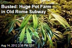 Busted: Huge Pot Farm in Old Rome Subway