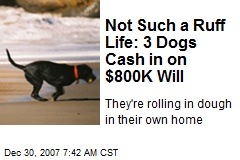 Not Such a Ruff Life: 3 Dogs Cash in on $800K Will