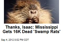 Thanks, Isaac: Mississippi Gets 16K Dead 'Swamp Rats'