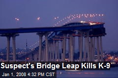 Suspect's Bridge Leap Kills K-9