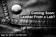 Coming Soon: Leather From a Lab?