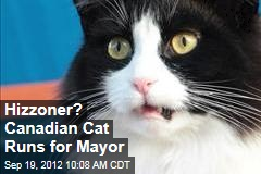 Hizzoner? Canadian Cat Runs for Mayor