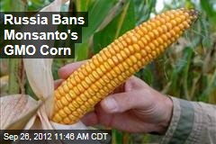Russia Bans Monsanto's GMO Corn