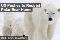 US Pushes to Restrict Polar Bear Hunts