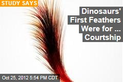 Dinosaurs' First Feathers Were for ... Courtship