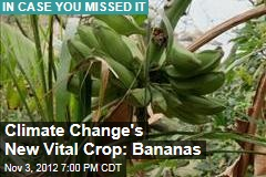 Climate Change to Make Bananas Vital Food Crop