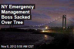 NY Emergency Management Boss Sacked Over Tree