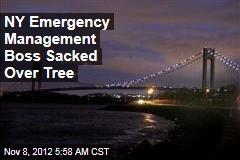 NY Emergency Management Boss Sacked Over Tree