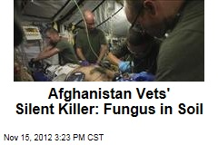Iraqi Vets' Silent Killer: Fungus in Soil