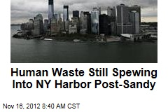 Human Waste Still Spewing Into NY Harbor Post-Sandy
